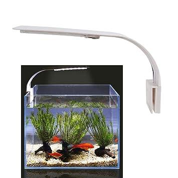 Aquarium Led Kokomall Clip À Nano Eclairage BlancLumiere Lampe uPiOkXZ