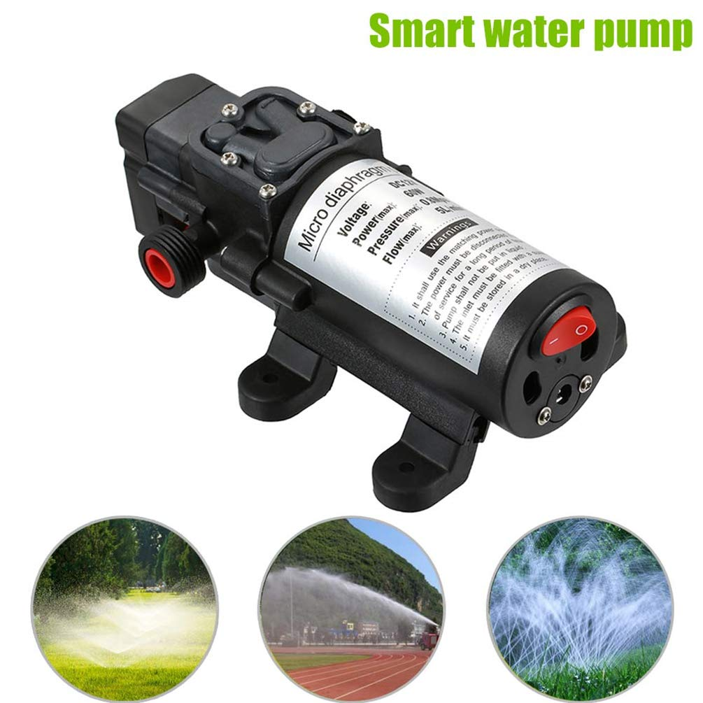 Starall 12V 60W Micro Electric Diaphragm Water Pump with Switch for Car Washing Garden Irrigation