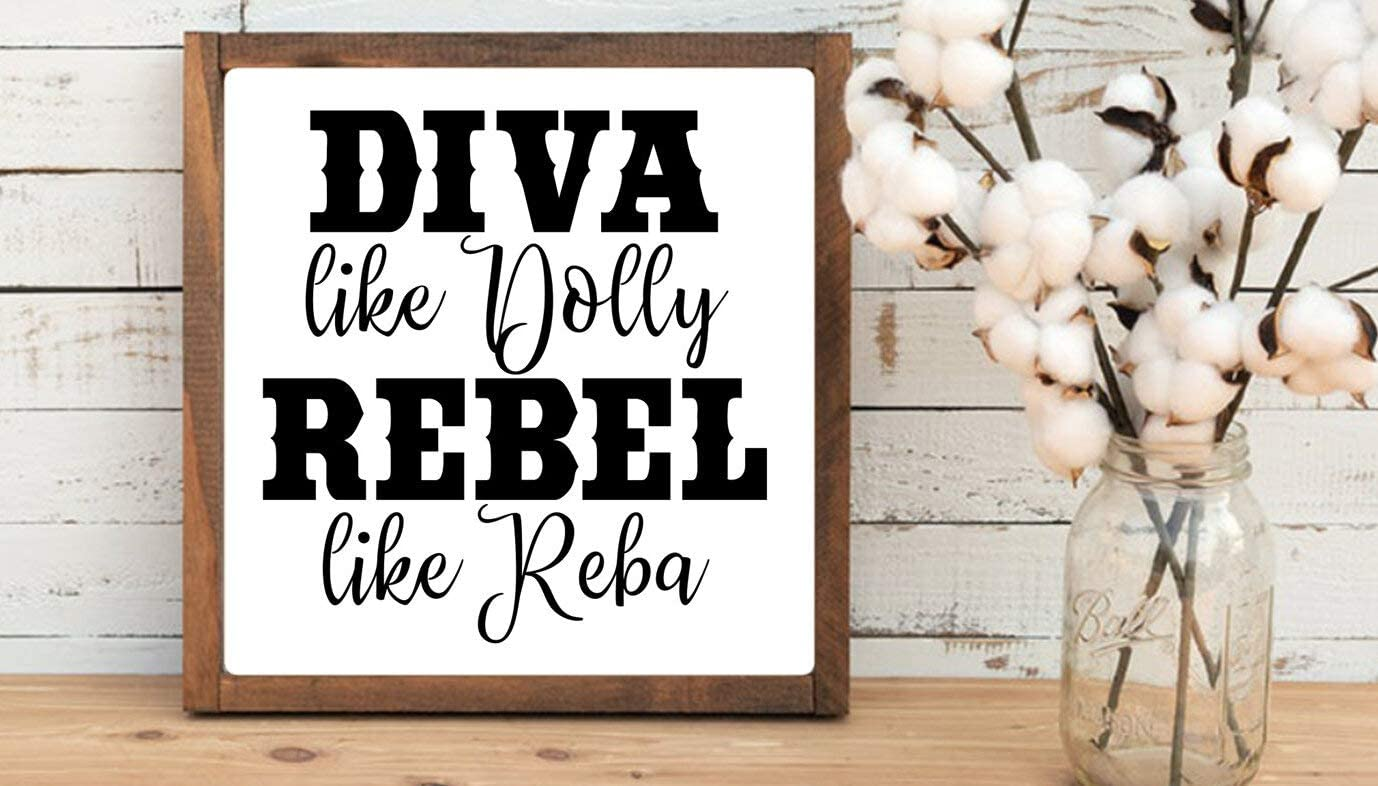 43LenaJon Diva Like Dolly Rebel Like Reba Country Music Inspirational Rustic Wood Wall Sign,Hanging Wood Sign Decor for Garden,Personalized Wooden Farmhouse Welcome Label with Frame