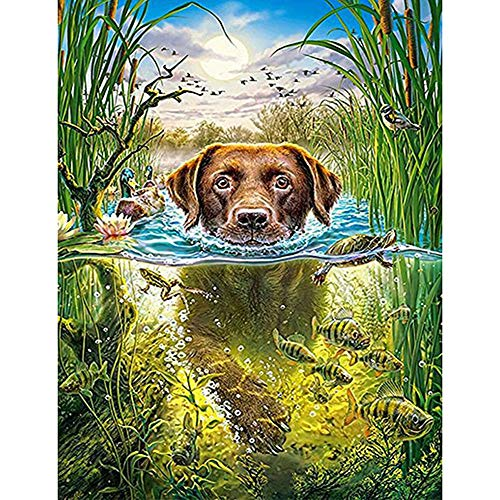 DIY 5D Diamond Painting by Number Kits, Painting Cross Full Drill Crystal Embroidery for Home Wall Decor Gift Pond Swimming Puppy 11.8x15.7in 1 by Westsson]()