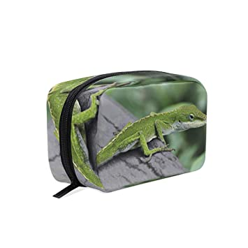 21461bf49e20 Amazon.com : Cosmetic Bag, Anole Lizard Portable Cosmetics Pouch ...