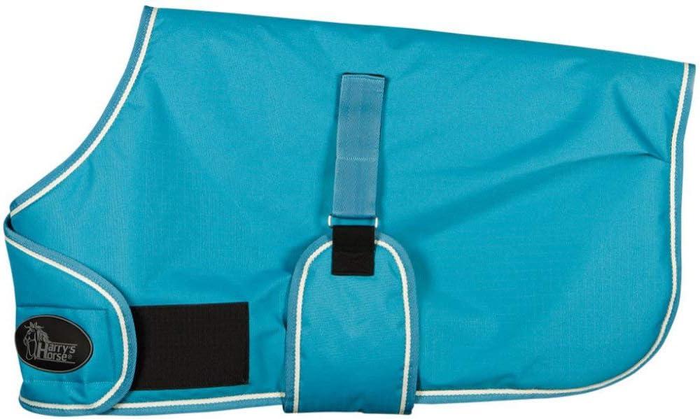 Reitsport Amesbichler Harry`s Horse - Manta para Caballo (con Banda de Velcro Ajustable, sin Costuras, Impermeable, Transpirable), Color Turquesa
