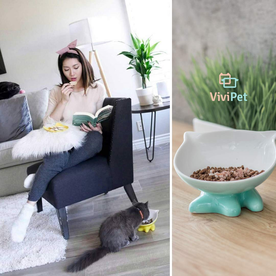 ViviPet Q Bowls and Big Head Water Bowl for Cat and Dog Under 20 Pound