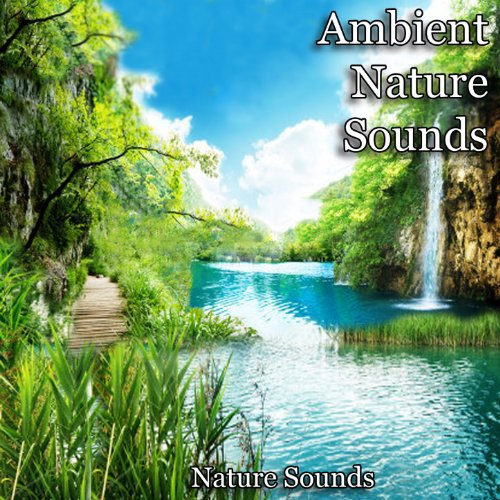 english country garden by nature sounds on amazon music. Black Bedroom Furniture Sets. Home Design Ideas