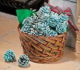 Color Pinecones in Basket