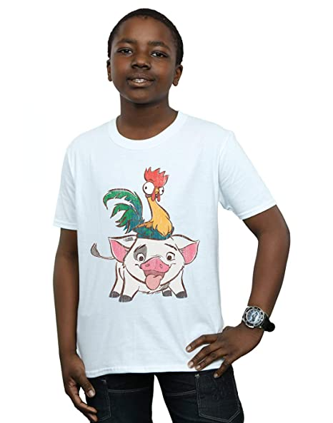 7979729a4 Amazon.com: Disney Boys Moana HEI HEI and Pua T-Shirt: Clothing