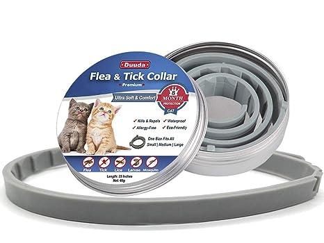 Amazon.com: Duuda - Collar de pulgas y garrapatas para gatos ...
