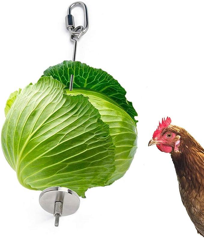 Chicken Toy,Chicken Mirror Toys and Chicken Parrot bird Hanging Feeder Chicken Veggies Skewer Fruit Holder Stainless Steel Feeder toy Foraging Coop Toys Bird Treat for Hen Chick Rooster