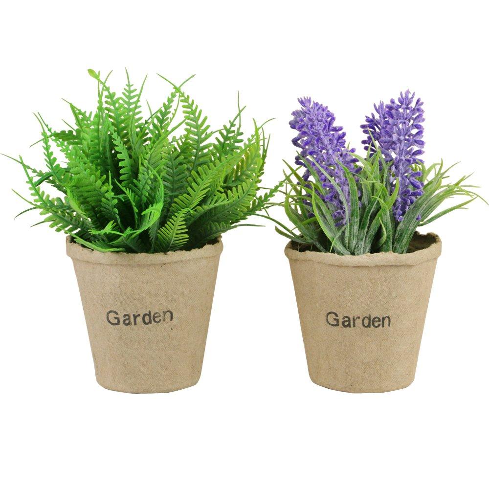 TONZE Plantas y Artificiales Flores de Lavanda y Boston Fern en Maceta, Paquete de 2