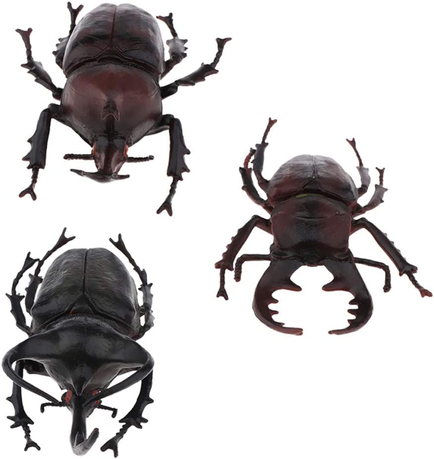 CUTICATE 3pcs Simulation Bug Beetle Figure Model Insects Playset Toy Figurines Kids