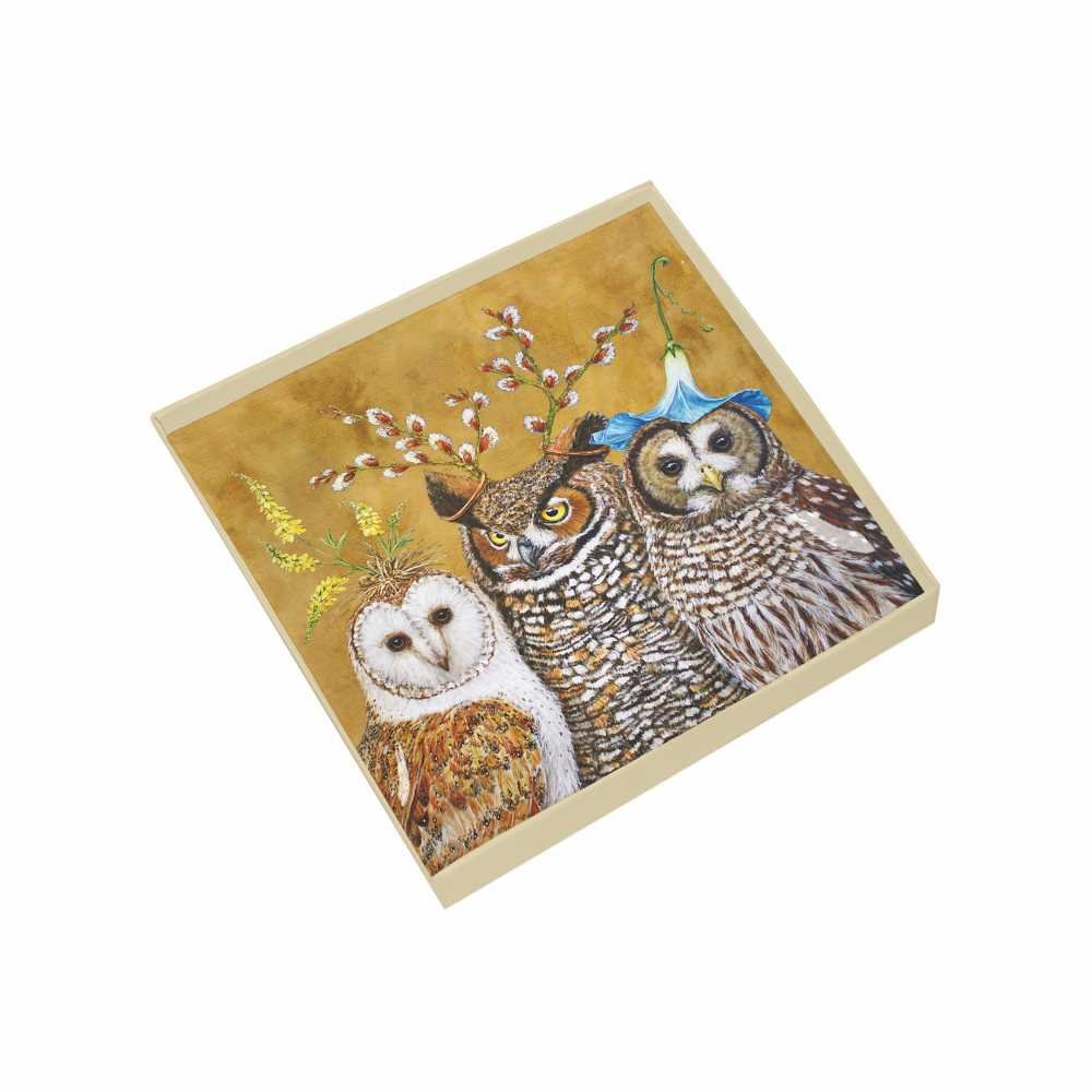 Paperproducts Design Gift-Boxed Glass Dish Displaying Original Vicki Sawyer Owl Family Design, 6 x 6 x 1'', Multicolor