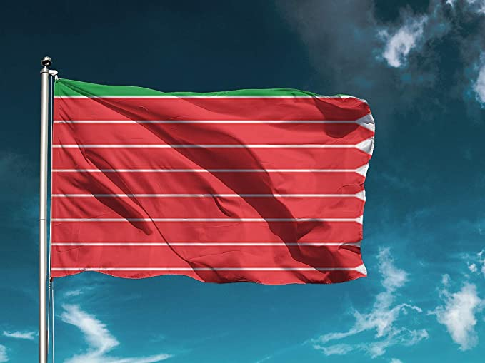 G I Bandera Zamora | Medidas 150cm x 85cm | Fácil colocación | Decoración Exteriores (1 Unidad): Amazon.es: Hogar