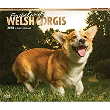 For the Love of Welsh Corgis 2018 Deluxe Wall Calendar