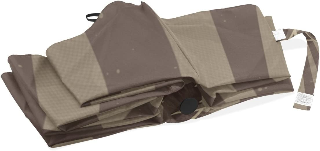 DOENR Compact Travel Umbrella Cute Bear Sun and Rain Auto Open Close Umbrellas Lightweight Portable Outdoor Folding Umbrella