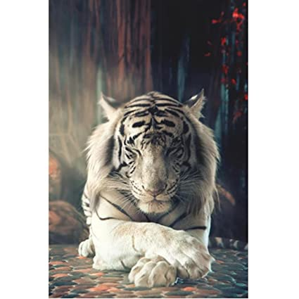 Needle Arts & Crafts Full Drill 5d Diy Diamond Paintingthe Stream Of White Tiger Animal Embroidery Cross Stitch Rhinestone Mosaic Painting Gift