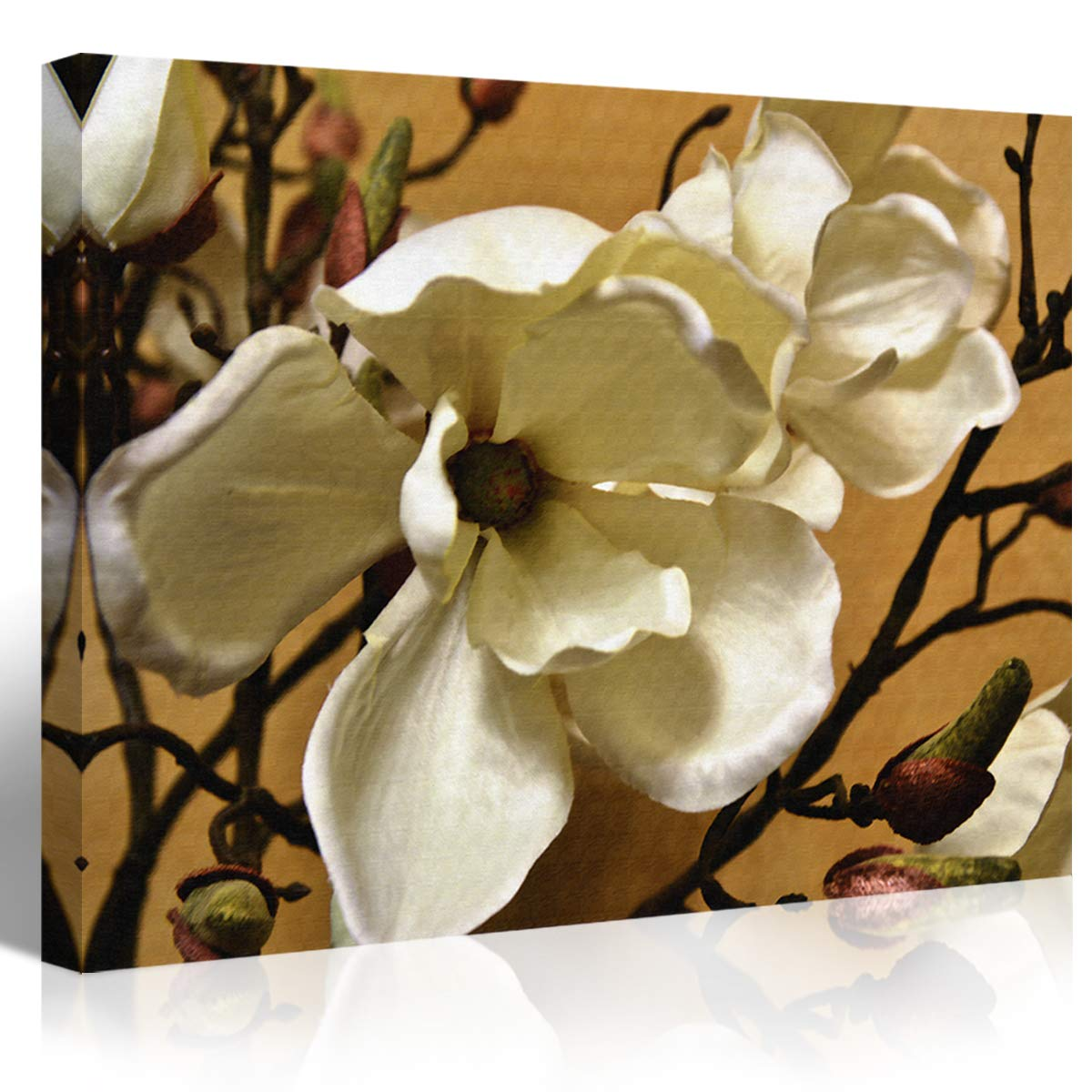 Amazoncom Mon Art 100 Hand Painted White Magnolia Flower Painting