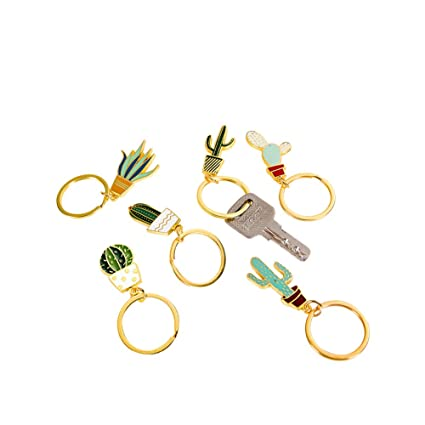 Amazon.com: Lindo creativo cactus Shaped clave cadenas ...