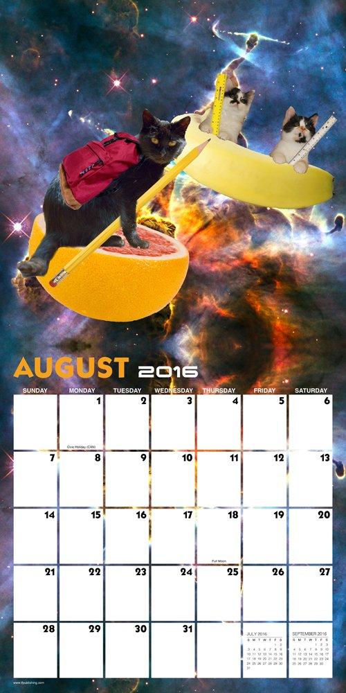 Space Cats Calendar Max Freeman 9781624381508 Books
