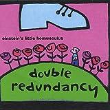 : Double Redundancy