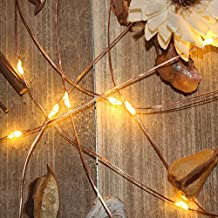 LED String Lights Battery Powered Copper Wire Lights with Timer 18FT Waterproof Outdoor Christmas Decorative Lights for Patio, Garden, Wedding, Party (Warm white)