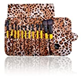 Best SHANY Cosmetics Quality Makeup Brushes - SHANY Cosmetics Urban Gal Collection Brush Set Review