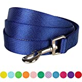"""Blueberry Pet 12 Colors Durable Classic Dog Leash 5 ft x 3/8"""", Royal Blue, X-Small, Basic Nylon Leashes for Puppies"""