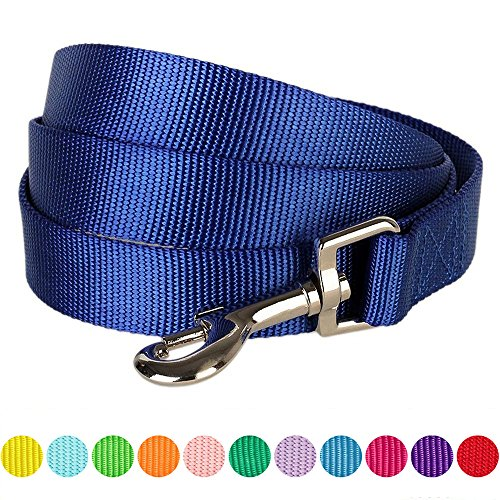 "Blueberry Pet 12 Colors Durable Classic Dog Leash 5 ft x 3/8"", Royal Blue, X-Small, Basic Nylon Leashes for Puppies"