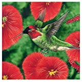Continental Art Center BD 2260 Hummingbird with Red Flowers Art Tile, 8 by 8-Inch