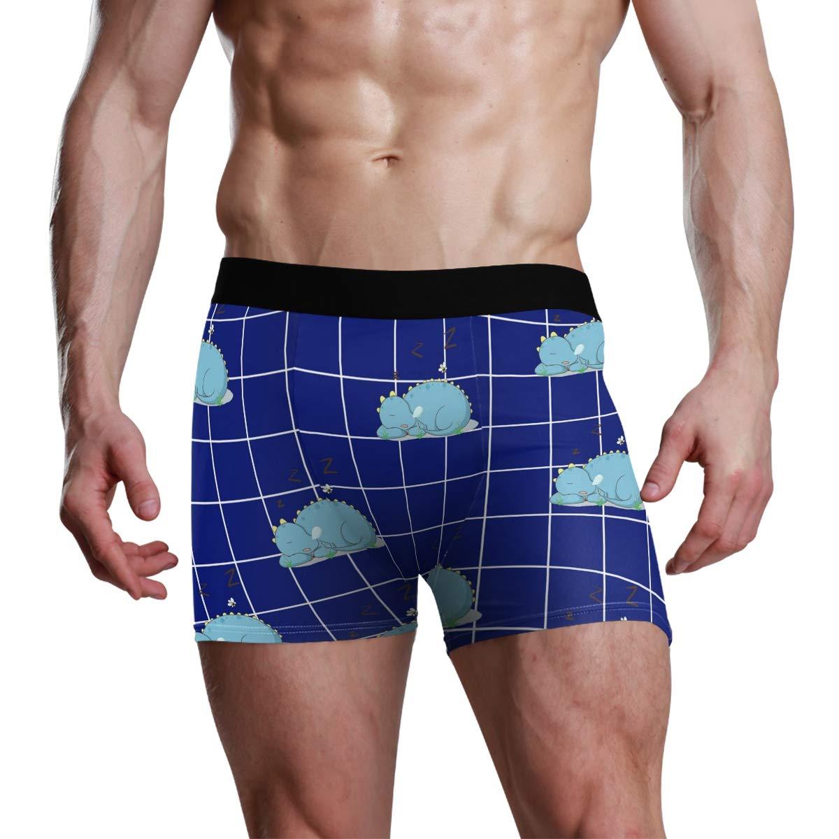 Vipsk Seamless Stretch Mens Polyester Boxer Briefs Underwear 1-Pack Set Dinosaur is Sleeping