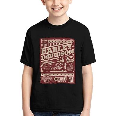 HSLL Harley Davidson-Logo Mens Casual Short Sleeve Shirt Graphic Tee Black