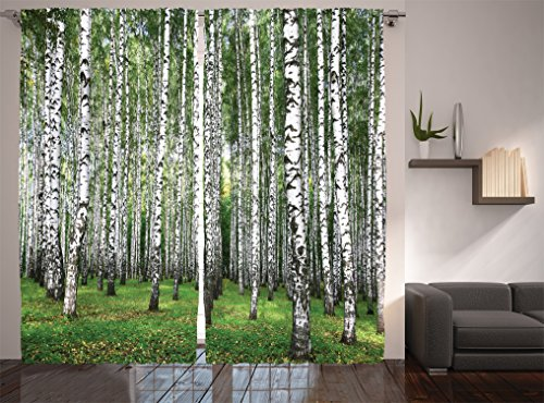 Ambesonne Farm House Decor Collection, Autumn Trees in Birch Forest September Time View Picture, Window Treatments, Living Boys Girls Room Curtain 2 Panels Set, 108 X 90 Inches, Green Grey Autumn Window