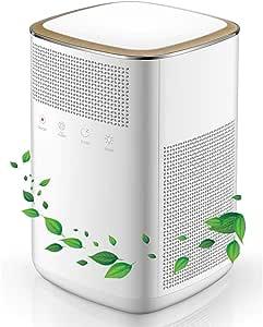 HW Inicio purificador de Aire, filtros de carbón con Verdaderos, 4 en 1 Purificador de Aire HEPA for Fumadores Polen ...