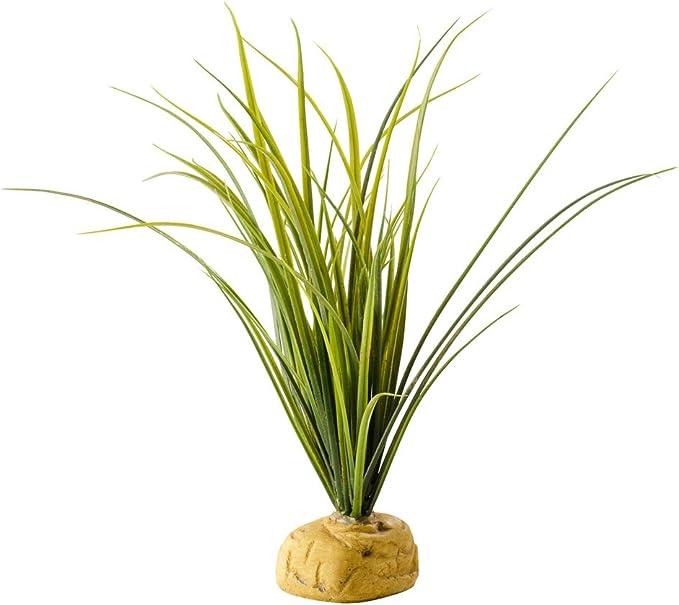 Exo Terra Planta con Base Turtle Grass