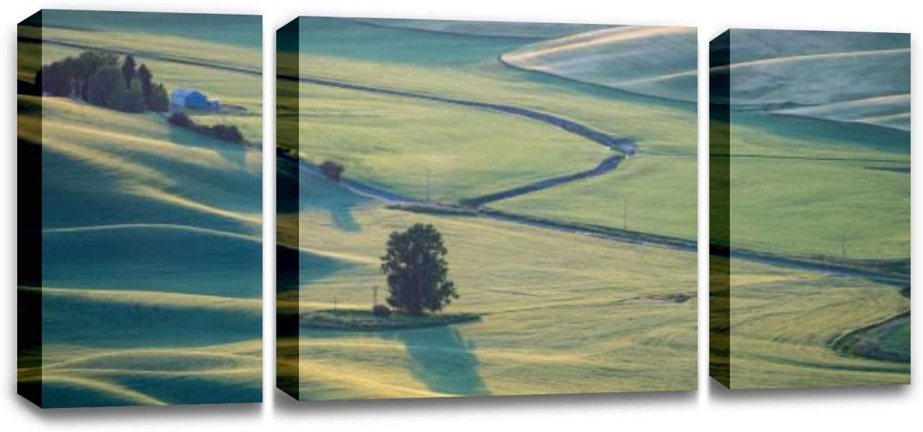 CCArtist Beautiful Aerial View of The Palouse Region of Eastern Washington Wall Decor Print on Canvas Modern Artwork Living Room Bedroom Painting Art Wall