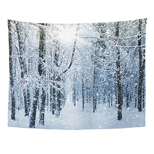 (Emvency Tapestries Print 60x80 Inches Blue Snow Winter Landscape White Forest Falling Weather Snowy Magic Scene Cold Wall Hangings Home Decor)
