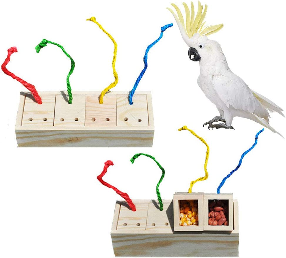 Wooden Box Food Foraging Feeder Discolored Intelligence Toy for Bird Budgie Parakeet Cockatiel Conure African Grey Cockatoo Amazon Macaw Lovebird Budgie Finch Canary Cage