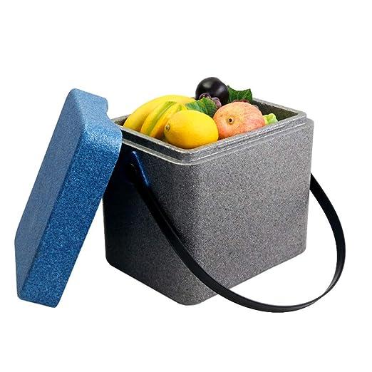 DEE Refrigerador-enfriador para automóvil Caja 11L Refrigerador ...