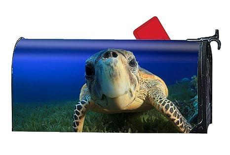 27c064d08e6 Hotspot Stylish Hawksbill Sea Turtle Bahamas Atlantic Pacific Indian Ocean  Sealife Underwater Funny Diving Tourism Blue
