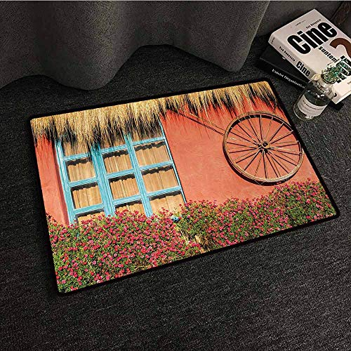 - DILITECK Washable Doormat Barn Wood Wagon Wheel Country House in Ecuador Red Wall Window Summer Flowers Straw Roof Suitable for Outdoor and Indoor use W31 xL47 Multicolor