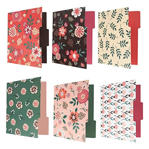 12-Count Colored File Folders