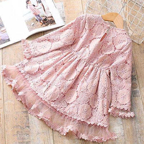 XIU*RONG Los Niños Vestidos Vestido De Niña Princesa De Encaje Falda Falda De Muñeca Pink
