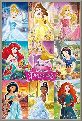 Disney Princess - Framed TV Show / Movie Poster / Print