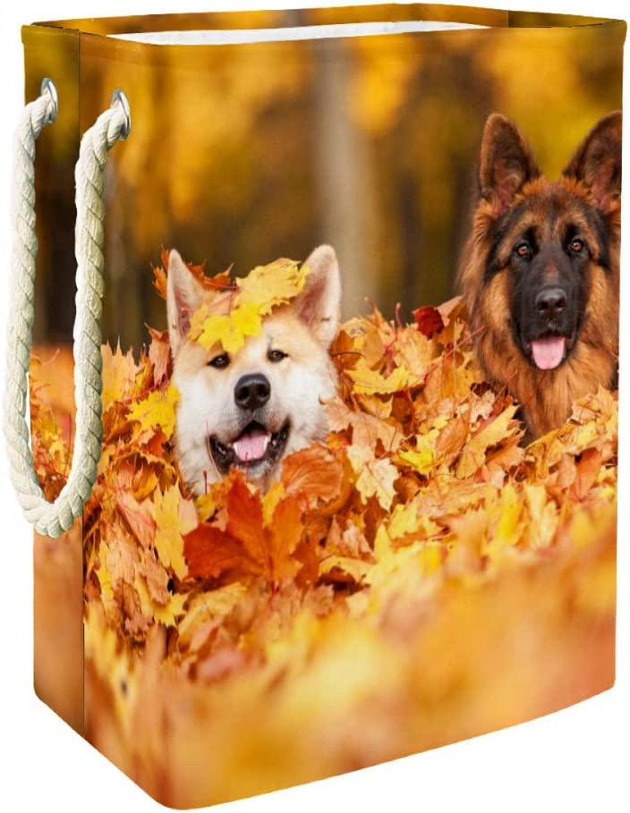 Unicey Falling Leaves Dog German Shepherd Laundry Basket Waterproof Storage Basket with Handles for Home Nursery College Dormitory
