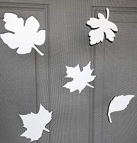DCentral Falling Leaves Screen Magnet Double-Sided Decor; Multipurpose, for Non-Retractable Screens, Helps to Stop Walking into Screens, Covers Small tears in Screens, Size Varies by Leaf Avg 4'' x 4'' by DCentral