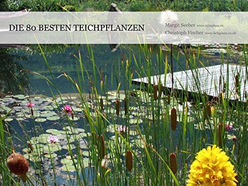 Die 80 besten Teichpflanzen (Naturteiche im Garten)