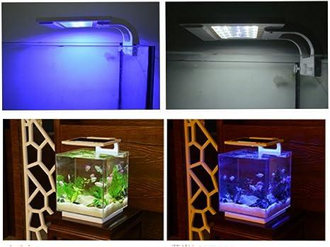 RunQiao Smart Acuario LED 21 cm 6 W luz RGB (3 modelos blanco/azul