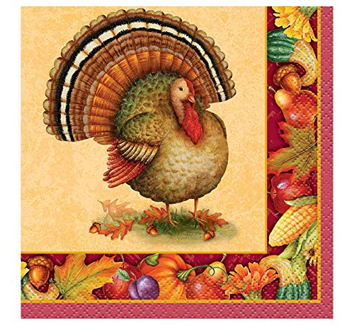 (Festive Turkey Thanksgiving Beverage Napkins, 16ct)