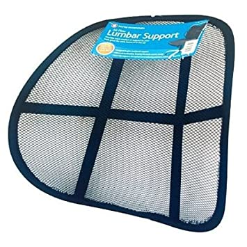 Brand New Mesh Lumbar Chair Back Support Car Work or Home Conforms Spinal Cord
