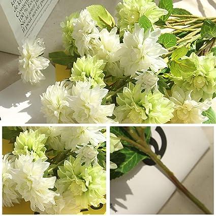 Lightclub 1 Peça Artificial Dahlia Flor Planta Fotografia