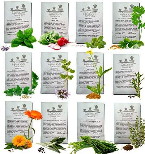 Herb Garden Light Requirements